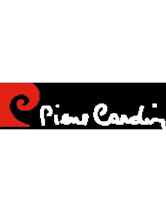 فایل فلش تبلت  چینی با مشخصه برد PIERRE CARDIN PC101